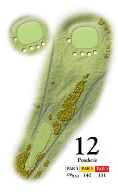 Medal-Stroke-Saver12