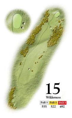 Medal-Stroke-Saver15