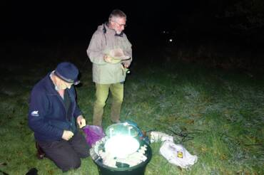 A WALK ON THE WILD SIDE – MOTH SURVEY