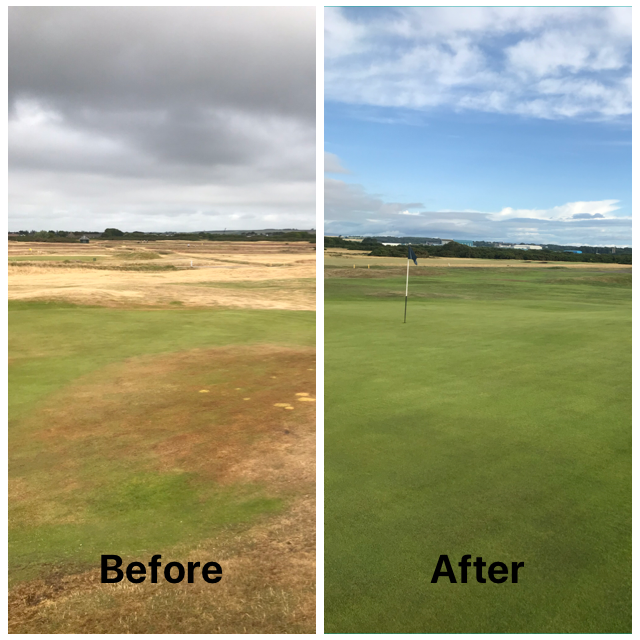 Head Greenkeeper monthly report August 2018