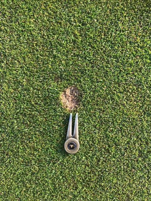 Head Greenkeeper Report July 2019