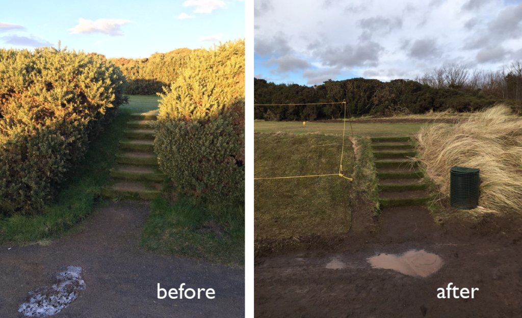gorse removal 01