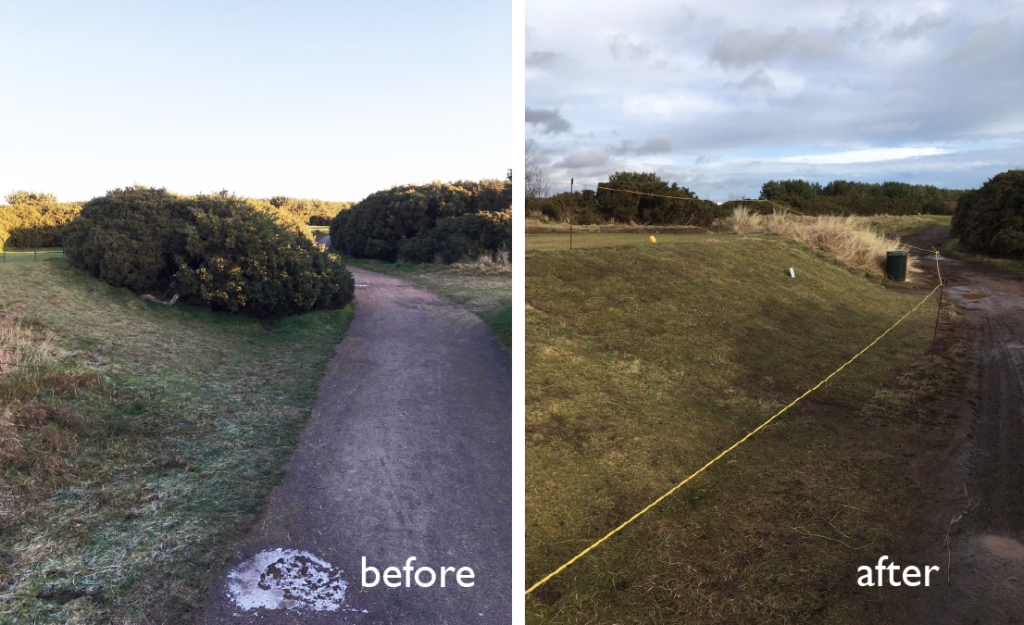 gorse removal 02